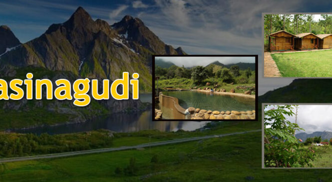 Masinagudi – the evergreen sheer beauty that you should not want to miss