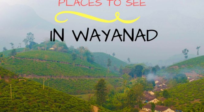 Wayanad – The Land of Spices and Mountains