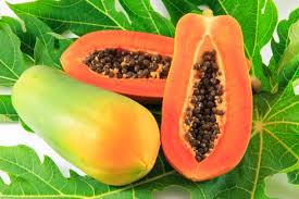 papaya summer fruits