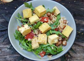 Here is why Tofu is Best of all protein rich food